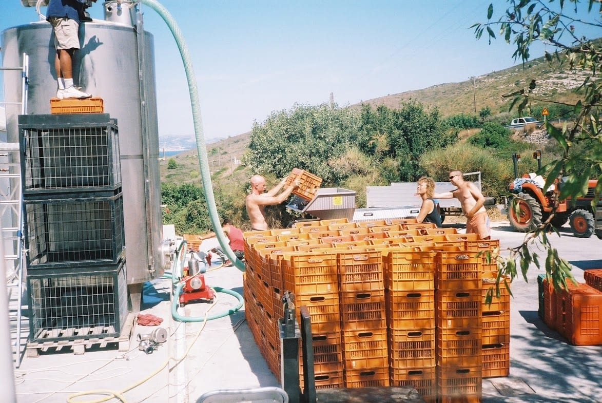 Making wine in Kefalonia