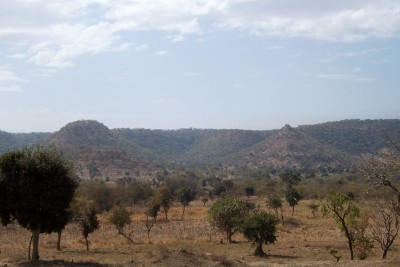 The dry Ethiopian bush in the north of the country