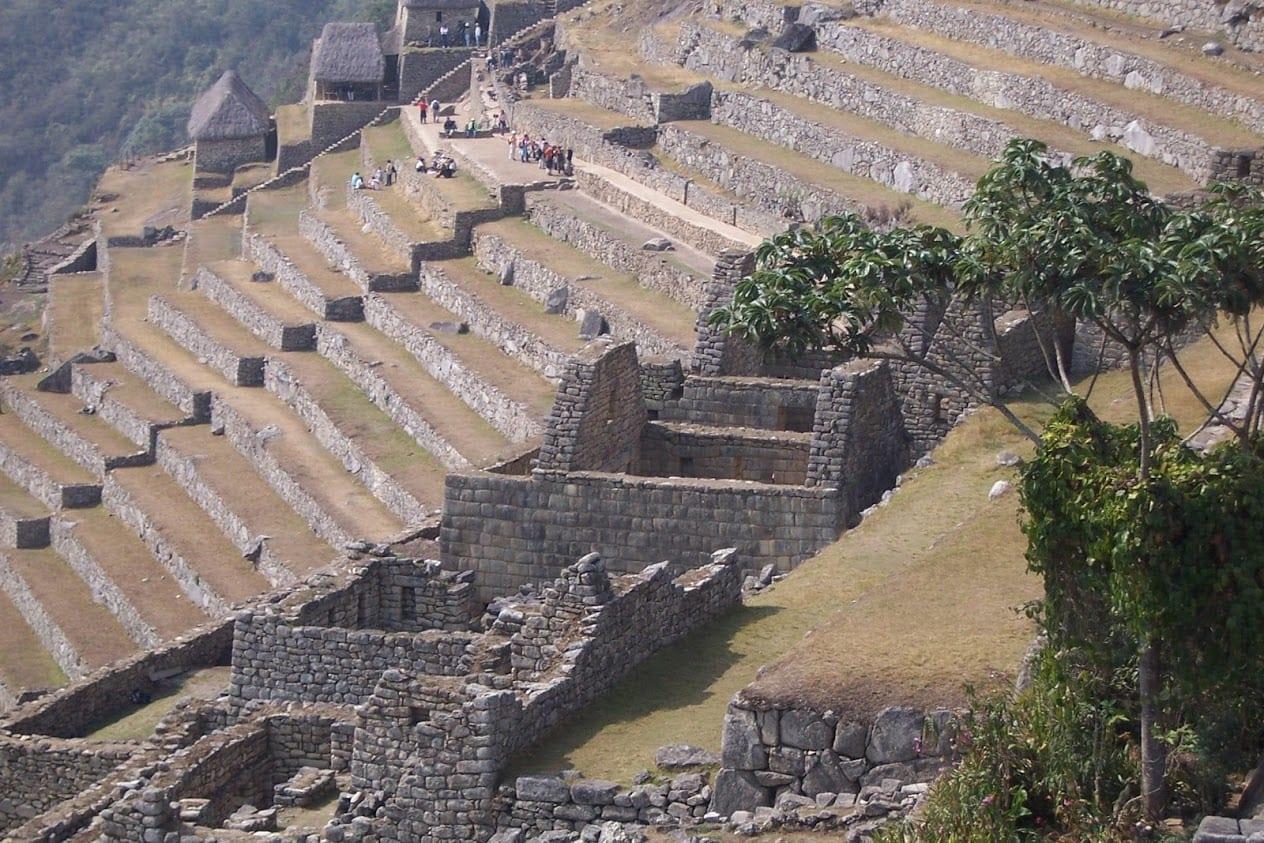 Lines of terraces at Machu Pichhu