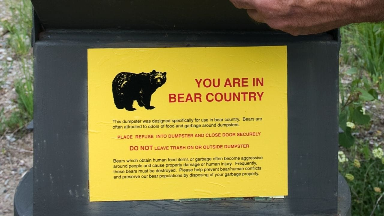 Cycling in bear country Canada