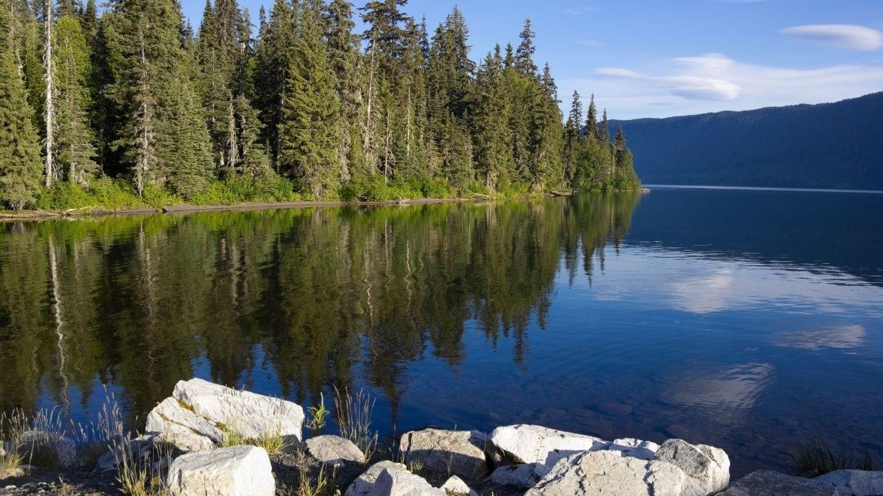 Meziadin Lake in Canada