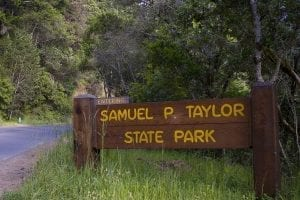 Samuel P Taylor state campground