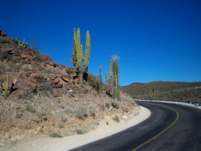 Cycling from El Rosario to San Agustin in Baja California in Mexico