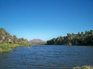 Vizcaino to San Ignacio