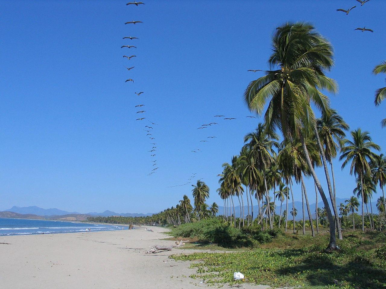 Playa Linda, Ixtapa