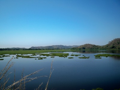 Cycling from Marquelia to Cuajinicuilapa  around a lily lake