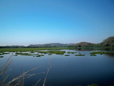 lilly-lake