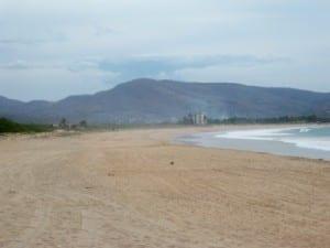 A field somewhere to Punta Perula