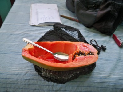 Eating Papaya in Costa Rica