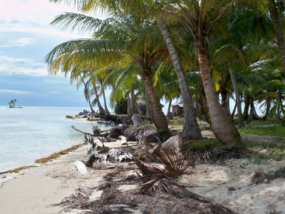 The palm fringed beaches of the San Blas islands near Panama.
