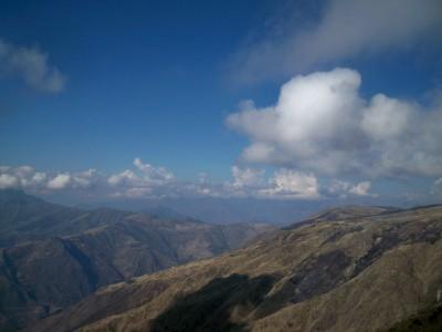 Kishuara in Peru