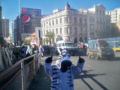 A man dressed as a dancing zebra in La Paz Bolivia