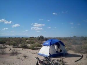 last wild camp