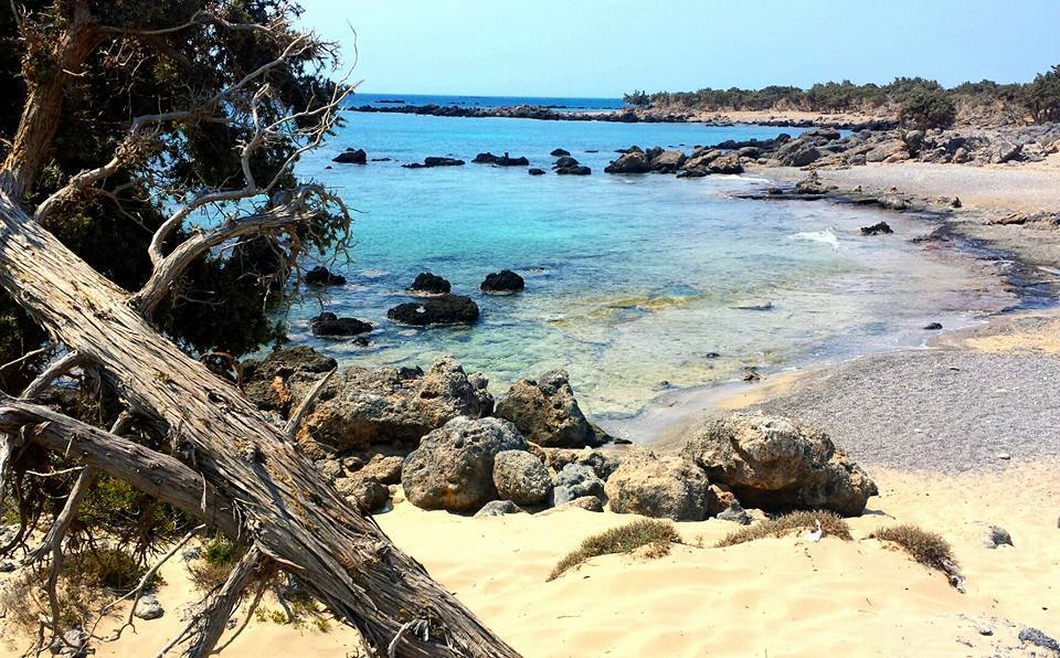 Kedrodasos Beach in Crete. This is one of the best beaches I have ever been too.