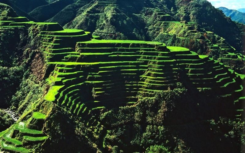 Banue Rice Terrace In Philippines