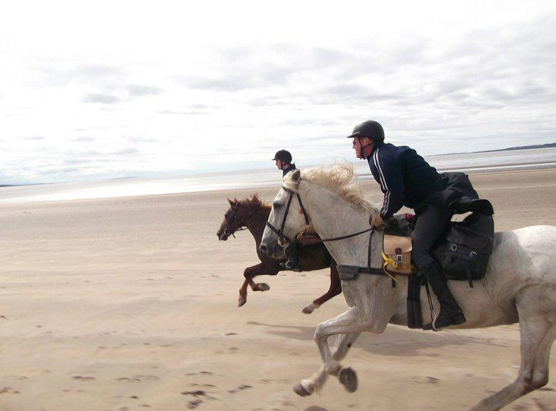 Go horse riding on a family adventure holiday