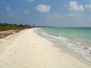 Florida- the Sunshine State