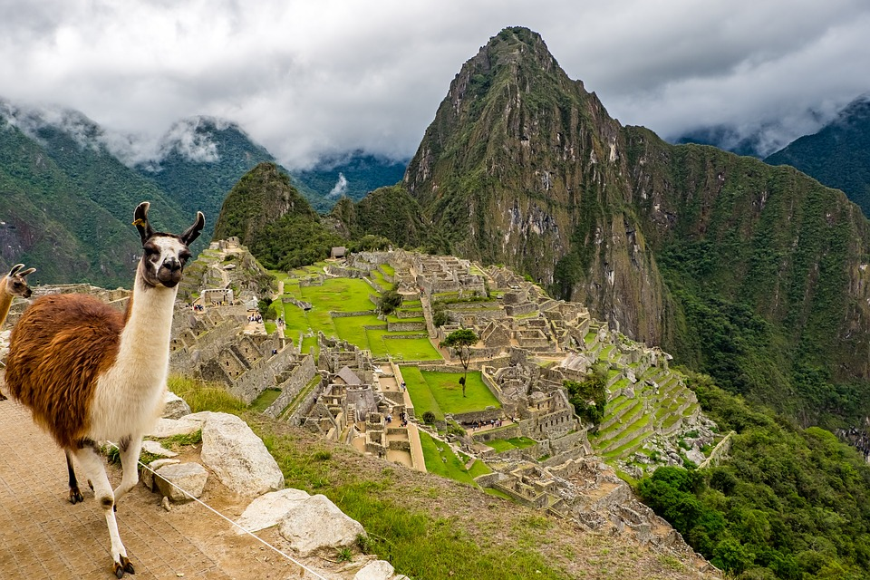A Llama at Machu Picchu - They are always ready for a photo opportunity!