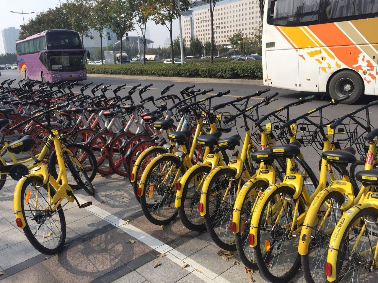 City bike share scheme in China