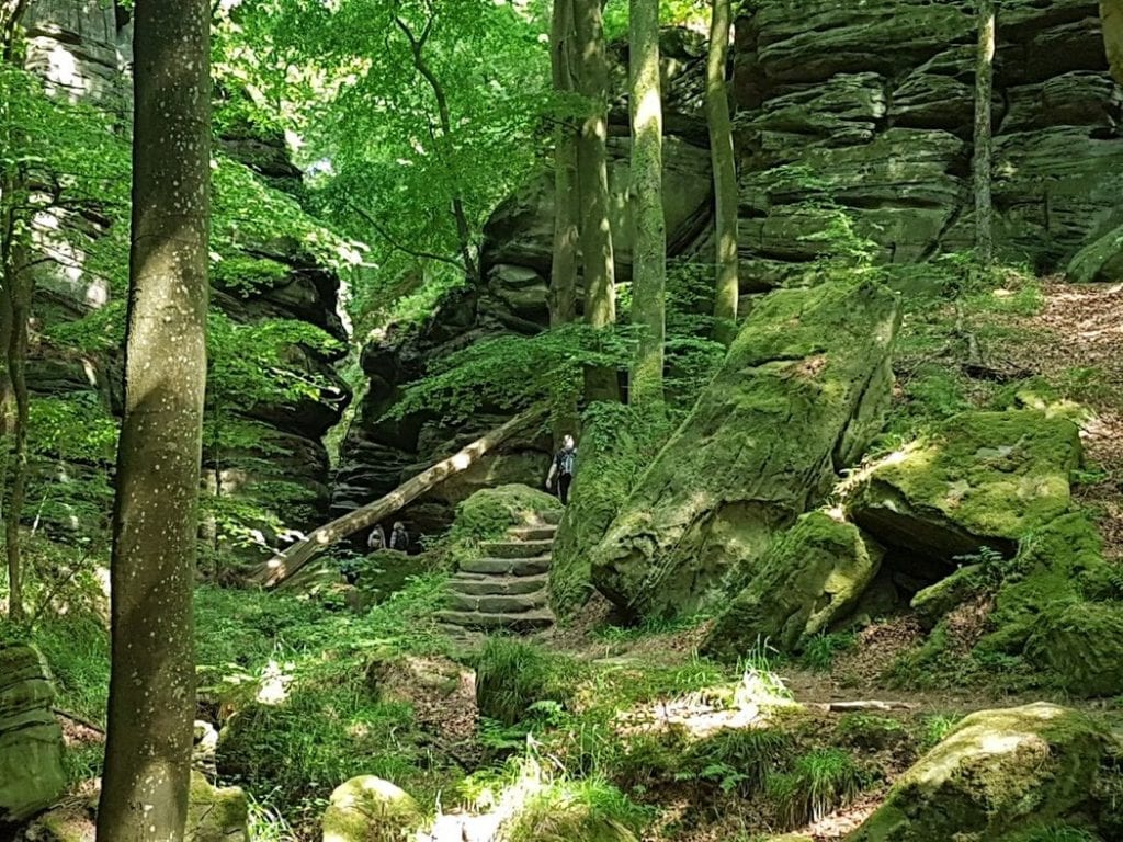 A lush, green grotto hidden away in the middle of the Mullerthal region of Luxembourg