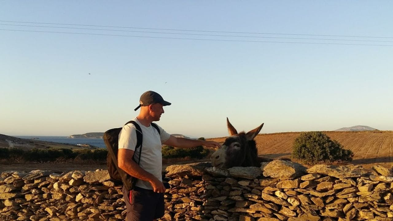 Which one is Dave Briggs and which one is the donkey on Schinoussa