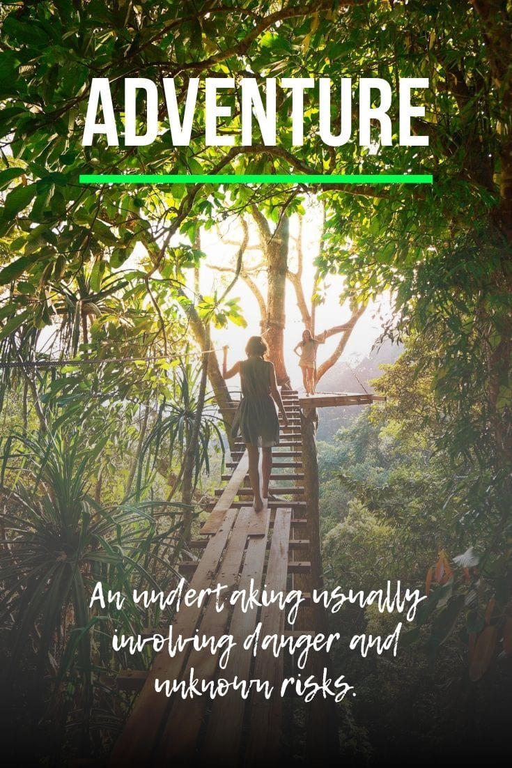 Quotes about Adventure travel - Adventure: An undertaking usually involving danger and unknown risks.