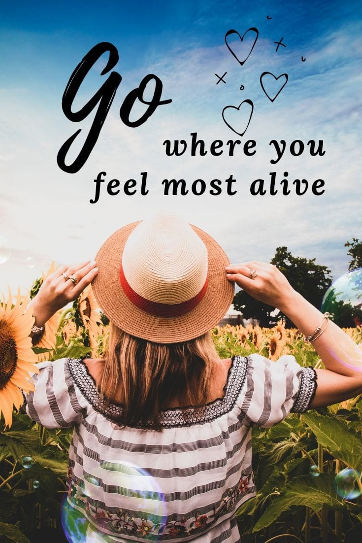 Inspirational Travel and Adventure Quote - Go where you feel most alive.
