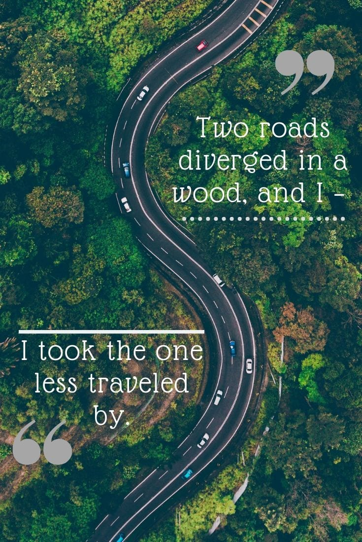 Two roads diverged in a wood, and I – I took the one less traveled by.
