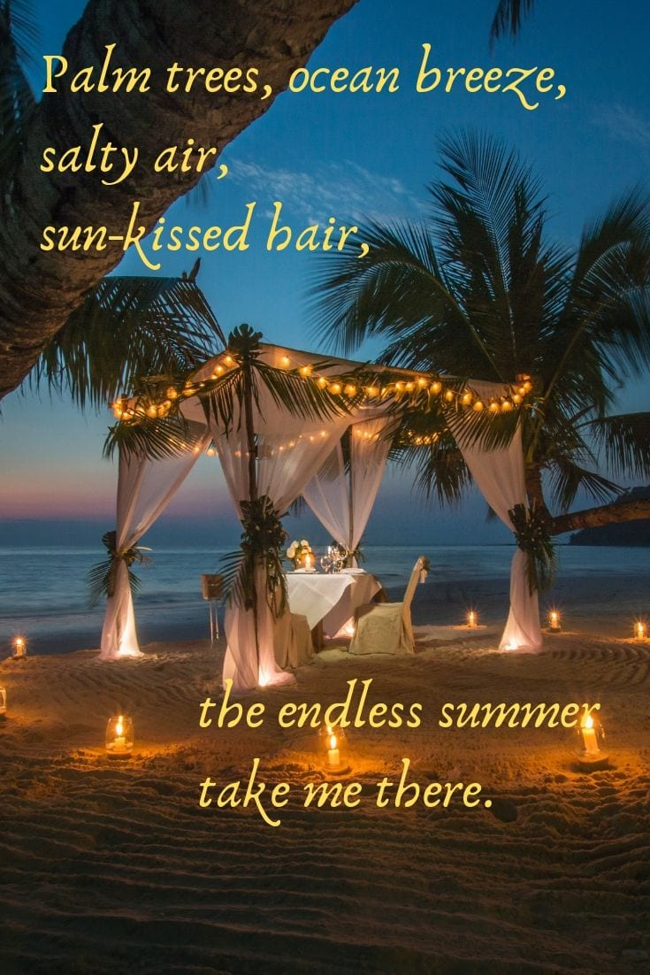 Beach quotes and sayings - Palm trees, ocean breeze, salty air, sun-kissed hair, the endless summer take me there.