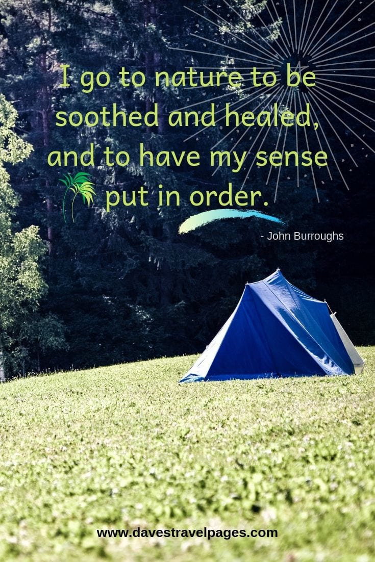 "Quotes about nature - ""I go to nature to be soothed and healed, and to have my sense put in order."""