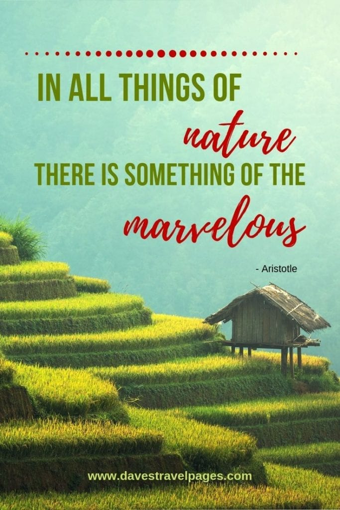 The marvel of nature: In all things of nature there is something of the marvelous. - Aristotle
