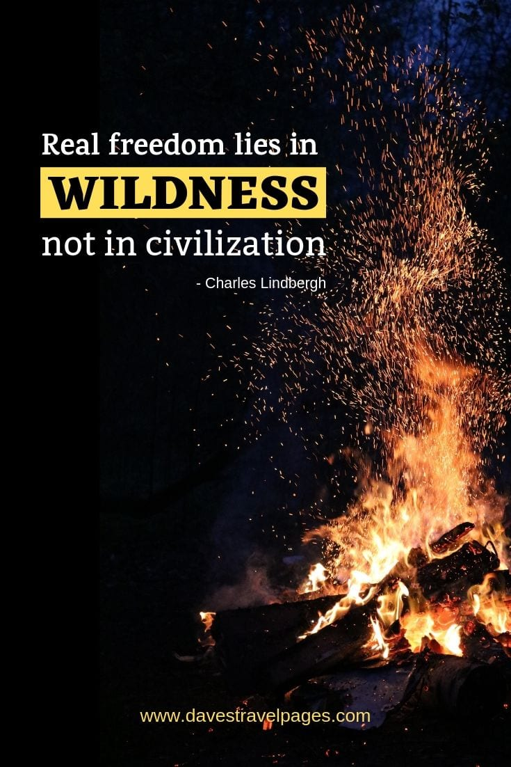 "Living in the wild quotes - ""Real freedom lies in wildness, not in civilization."""