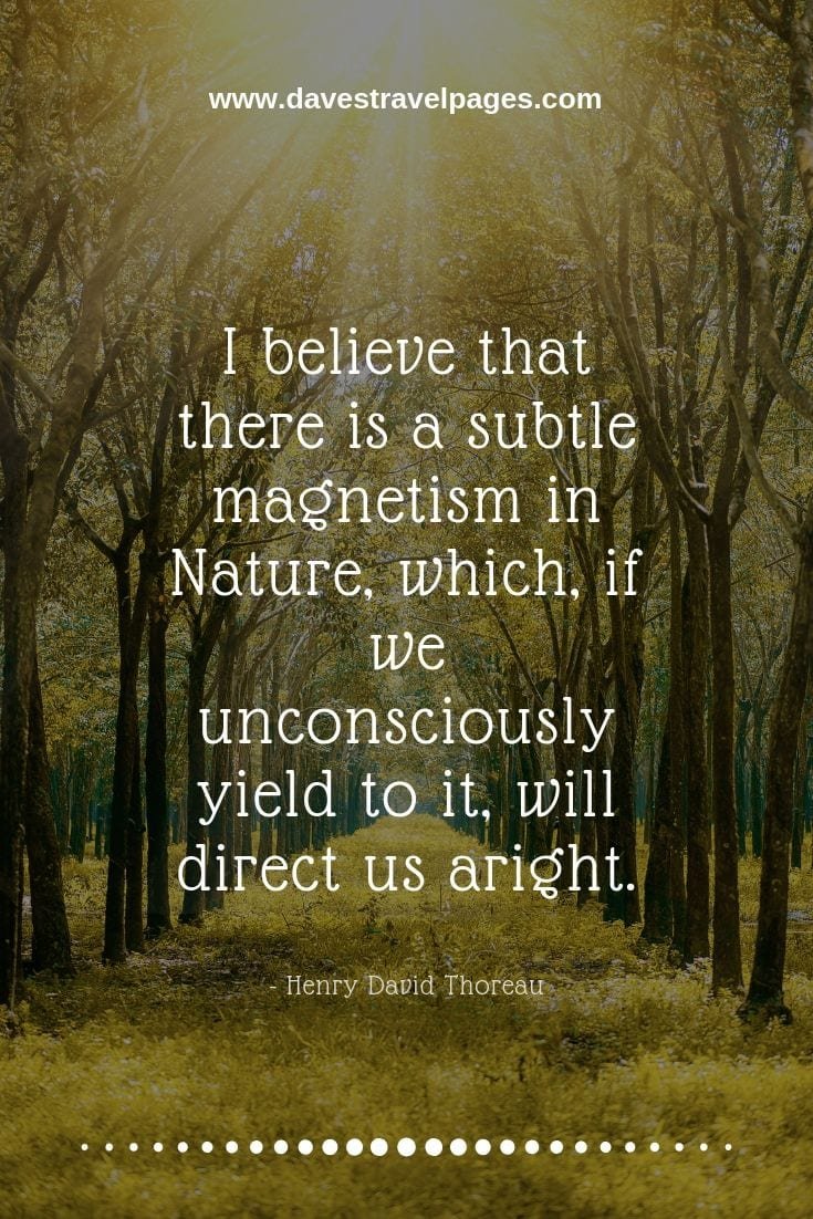 Nature sayings - I believe that there is a subtle magnetism in Nature, which, if we unconsciously yield to it, will direct us aright. - Henry David Thoreau