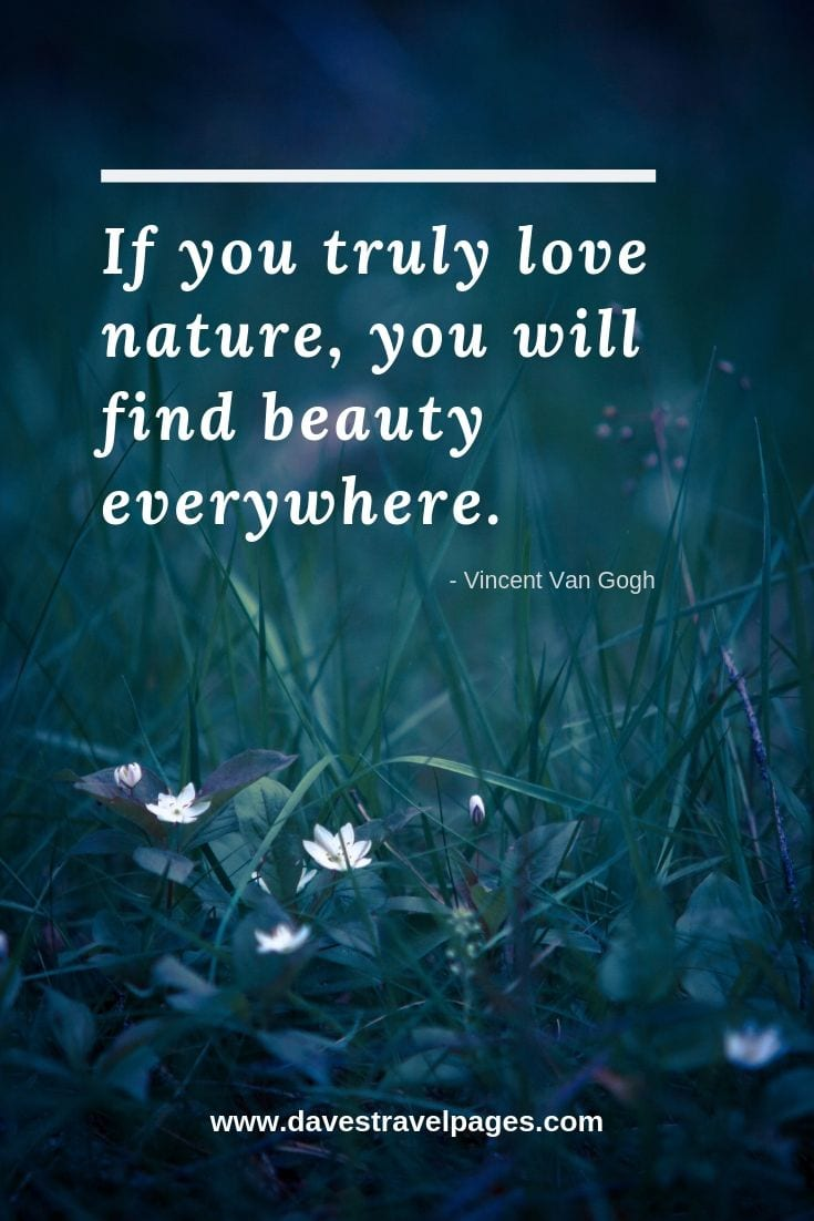 Quotes about the beauty of nature: If you truly love nature, you will find beauty everywhere. - Vincent Van Gogh