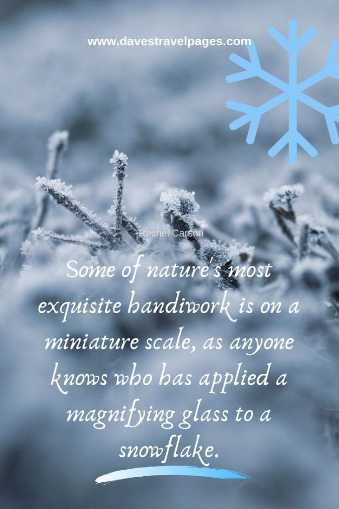 Inspiring quotes about nature - Some of nature's most exquisite handiwork is on a miniature scale, as anyone knows who has applied a magnifying glass to a snowflake. - Rachel Carson