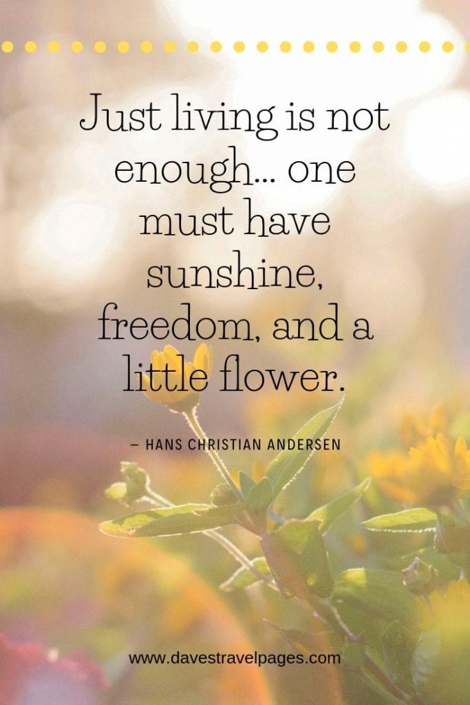 """Philosophical Quotes About Living - Just living is not enough… one must have sunshine, freedom, and a little flower."""" – Hans Christian Andersen"""