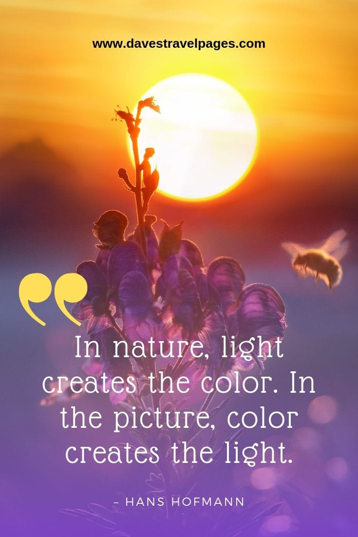 "Natural World Quotes: ""In nature, light creates the color. In the picture, color creates the light."" – Hans Hofmann"