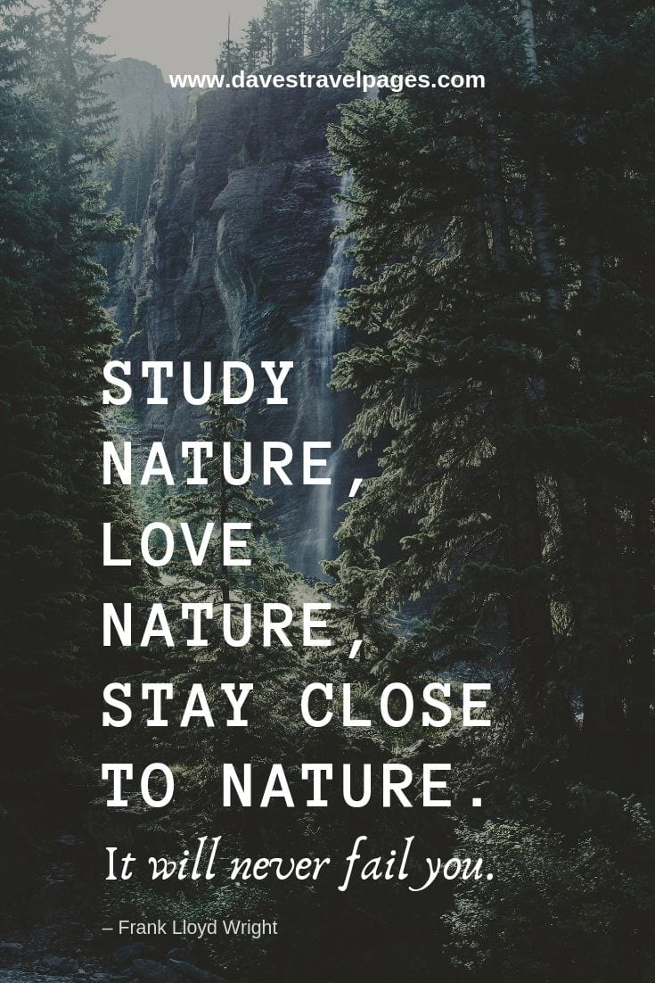 "Quotes about enjoying nature - ""Study nature, love nature, stay close to nature. It will never fail you."" – Frank Lloyd Wright"