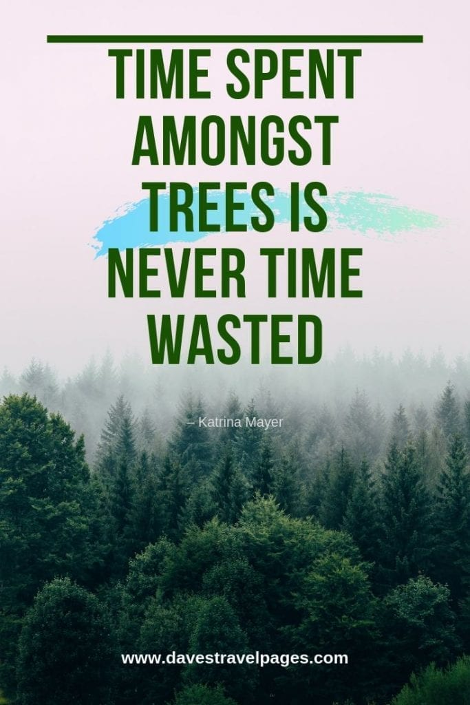 """Quotes about trees - """"Time spent amongst trees is never time wasted."""" – Katrina Mayer"""