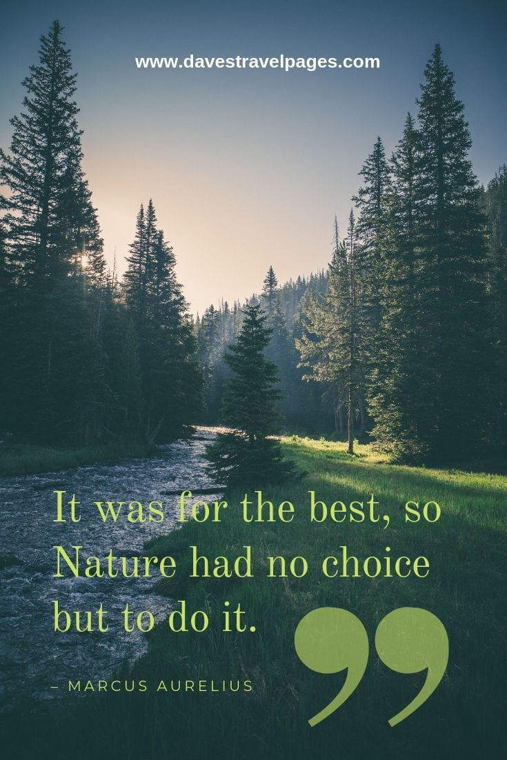 "Mother Nature Quotes - ""It was for the best, so Nature had no choice but to do it."" – Marcus Aurelius"