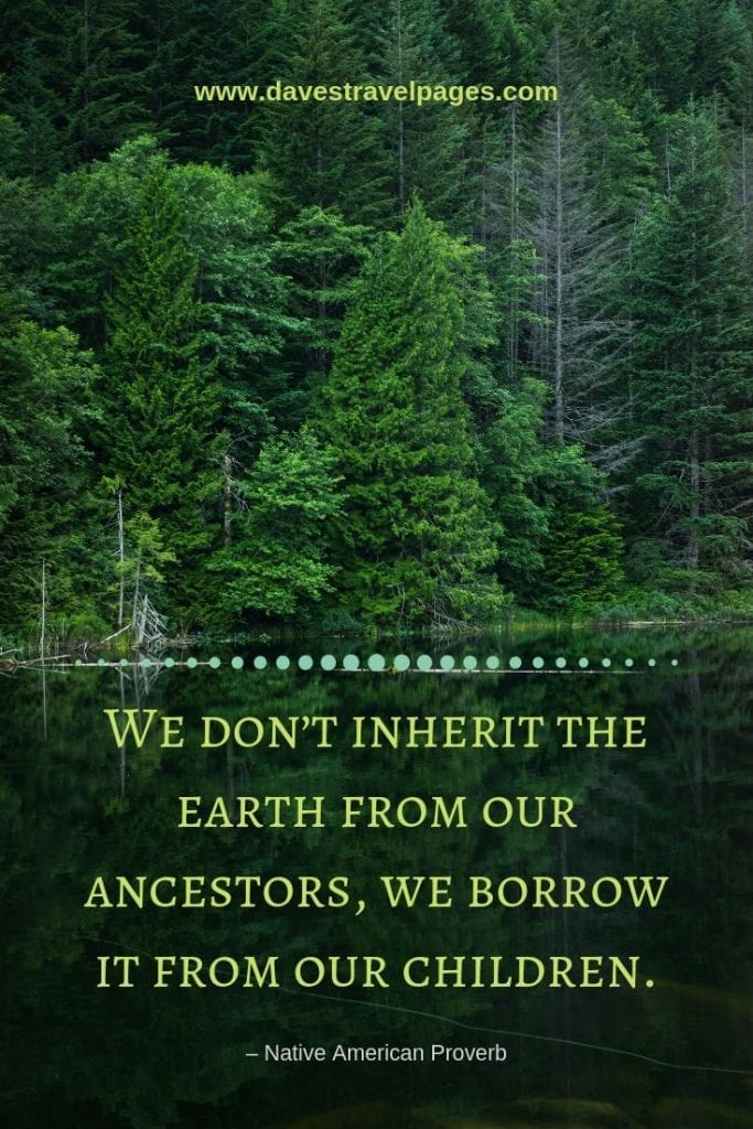 """Environmental Quotes - """"We don't inherit the earth from our ancestors, we borrow it from our children."""" – Native American Proverb"""