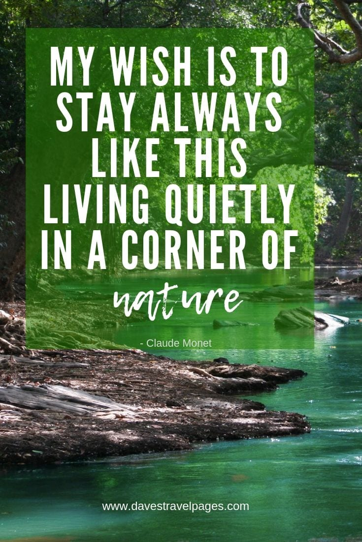 Quotes about living in nature - My wish is to stay always like this, living quietly in a corner of nature.
