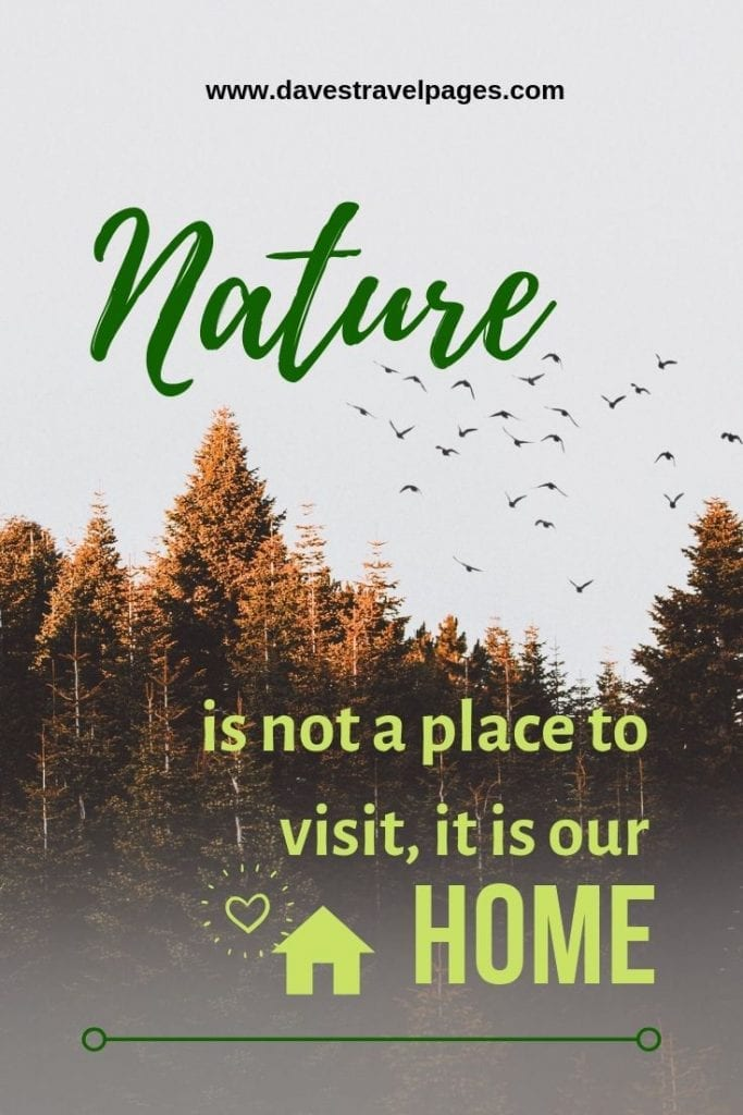 Quotes about living in nature: Nature is not a place to visit, it is our home
