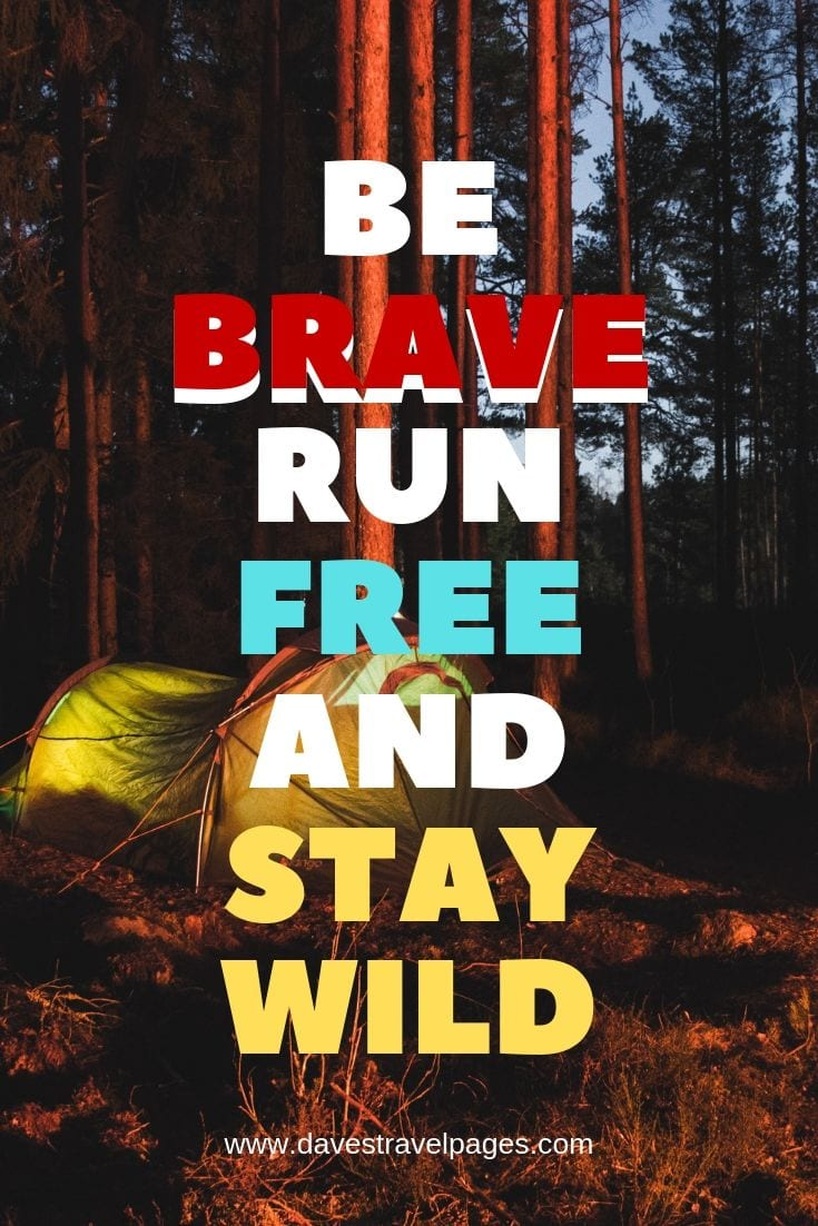 "Inspirational Quotes - ""Be Brave Run Free And Stay Wild"""