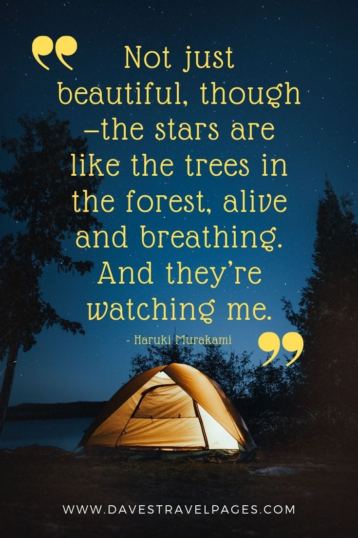 Quotes about being outdoor in the stars:Not just beautiful, though—the stars are like the trees in the forest, alive and breathing. And they're watching me.
