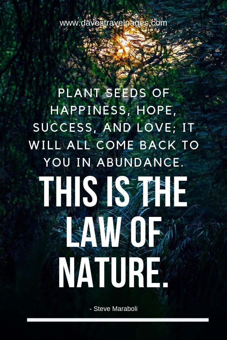 Laws of Nature Quotes: Plant seeds of happiness, hope, success, and love; it will all come back to you in abundance. This is the law of nature