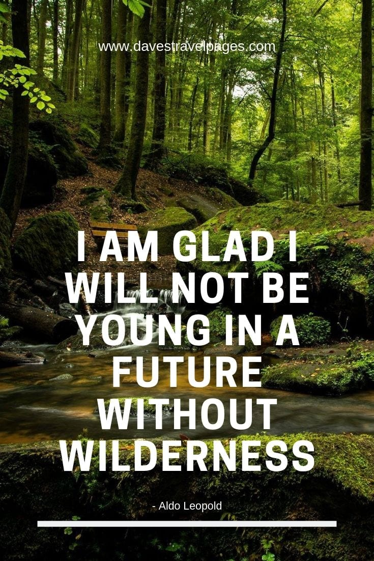 Outdoor and Wilderness Quote - I am glad I will not be young in a future without wilderness.