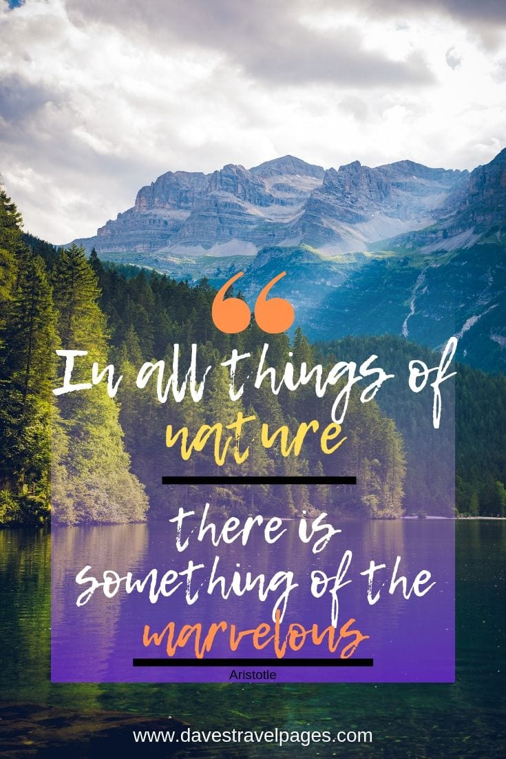 Great Outdoors Quotes - In all things of nature there is something of the marvelous.