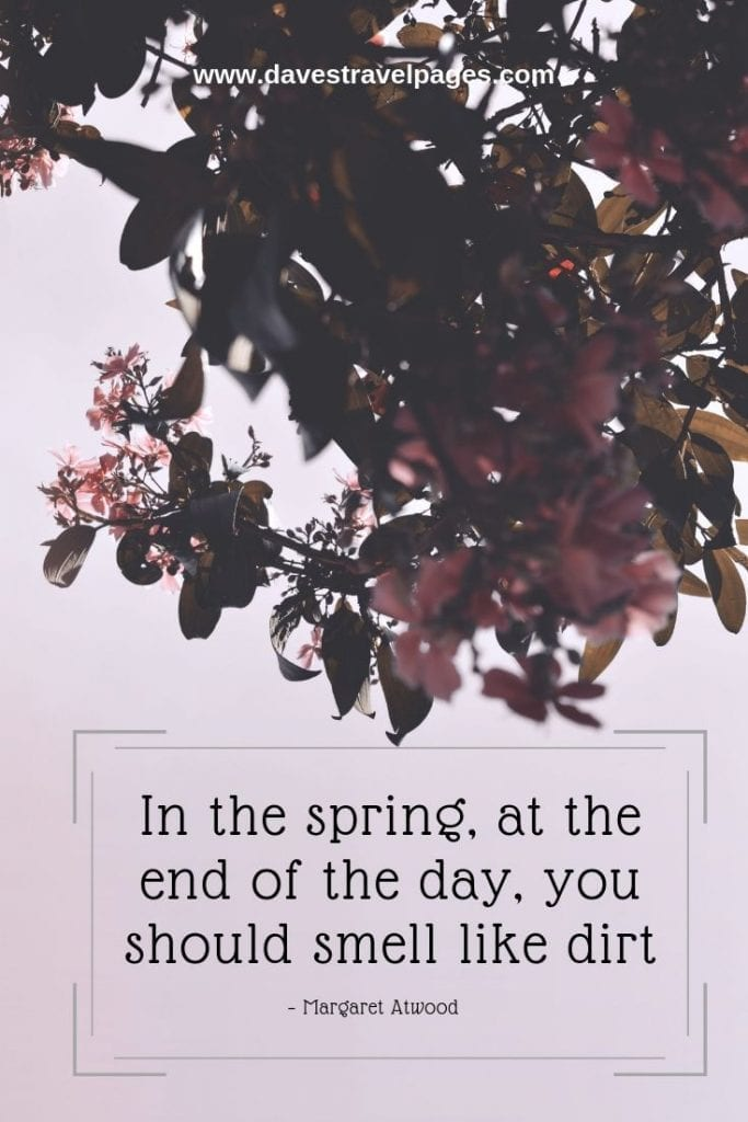 """Best quotes about nature - """"In the spring, at the end of the day, you should smell like dirt."""" – Margaret Atwood"""