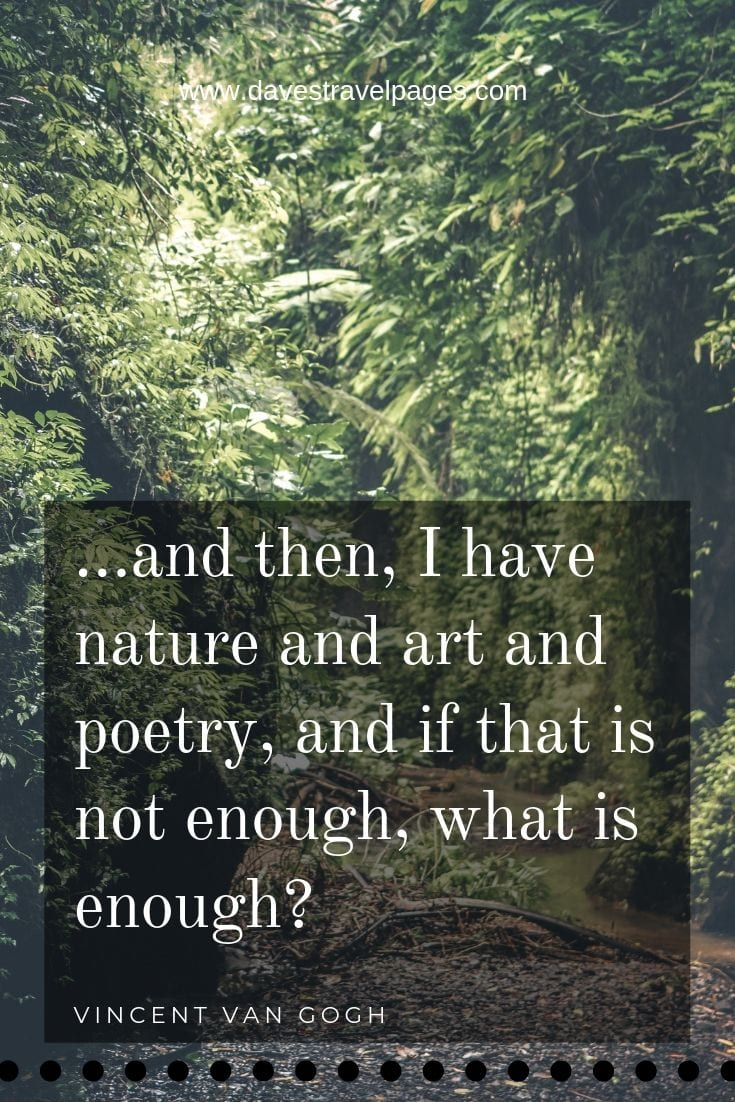 Van Gogh Quote - …and then, I have nature and art and poetry, and if that is not enough, what is enough?